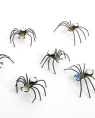 Spiders kln